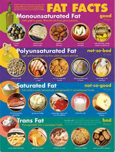 Food high in cholesterol picture 9