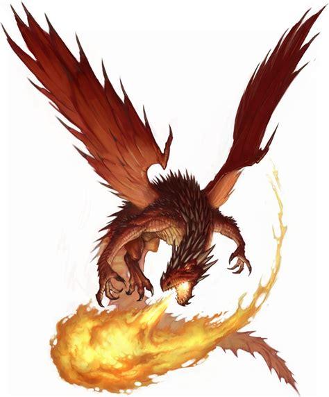 dragon picture 5