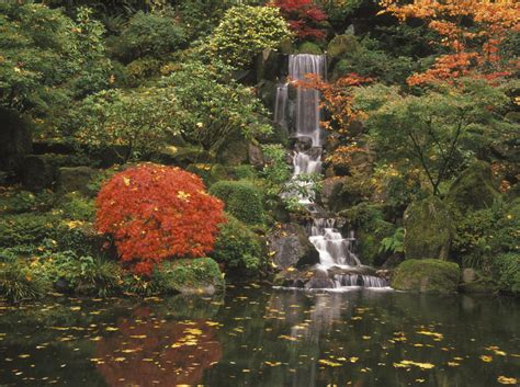 girls playing with boy's penis picture 10