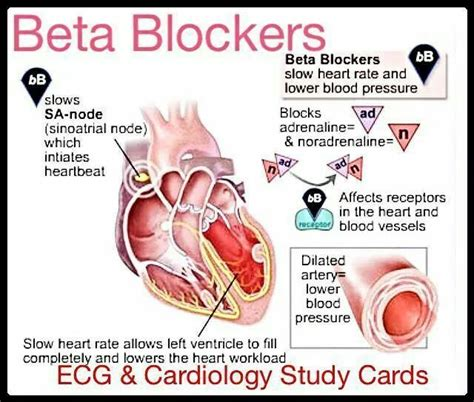 High blood pressure beta blocker picture 3