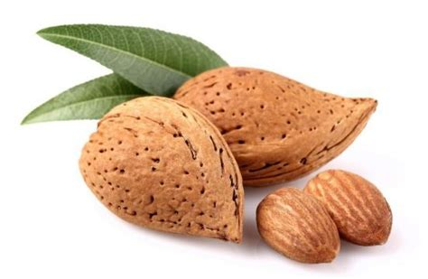 almonds lower cholesterol picture 13