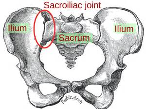 cures for sacraliliac joint picture 11