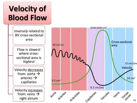 Blood flow does not go picture 1