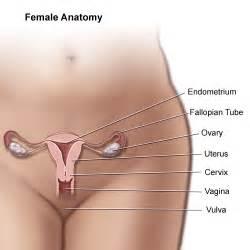 breast enlargement nd enlargement 5days aftersex means picture 19