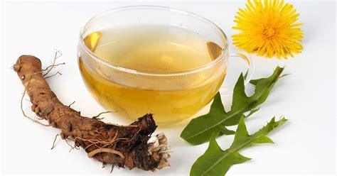dandelion tea picture 13