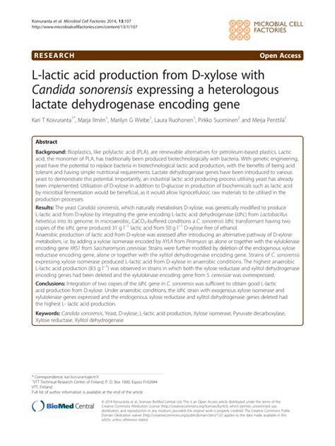 lactic acid yeast benefits picture 13