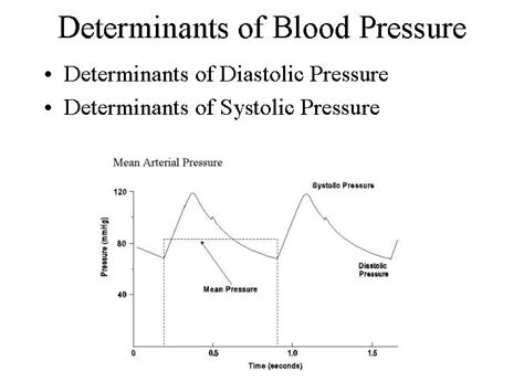 Superimposition principle with arterial blood pressure picture 8