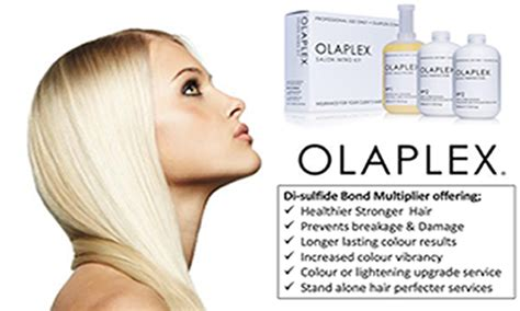 hair salons in pa that use olaplex picture 14