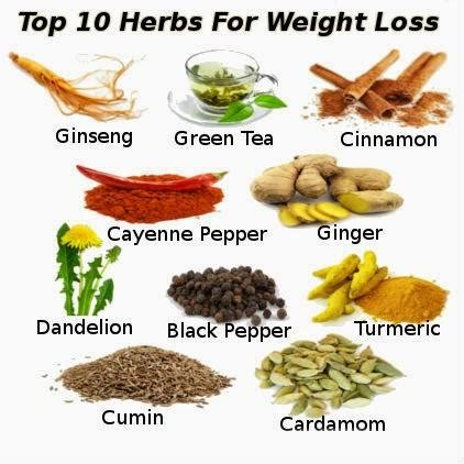 best herbs for weight loss picture 2