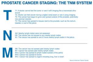 prostate cancer staging picture 1