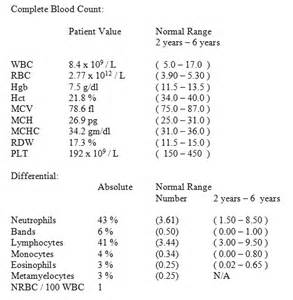 diet tips for raising white blood count picture 5