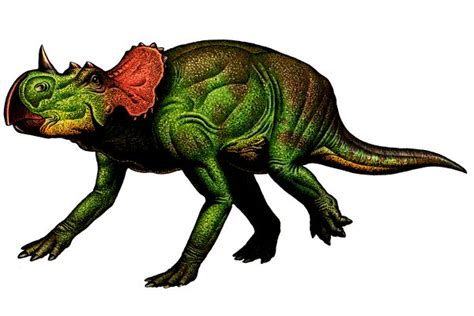 dinosaur h picture 7