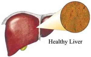 liver transplant natural supplements to avoid picture 2