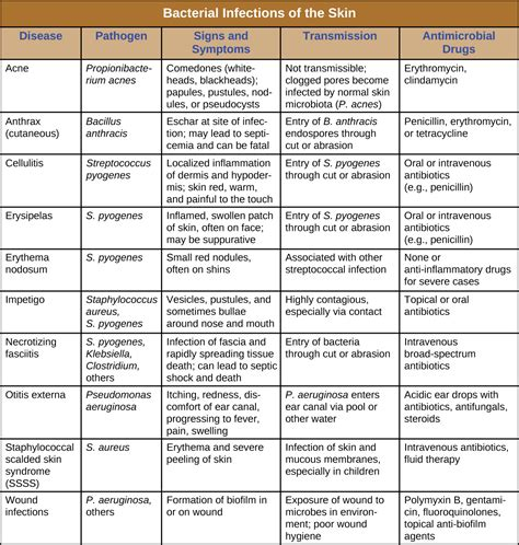 antibiotics bacterial infections picture 6