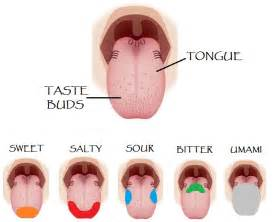 what diseases causes you to lose taste for coffee picture 9