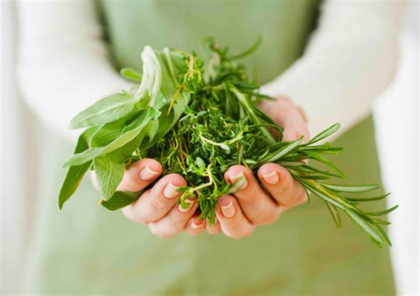herbal picture 7