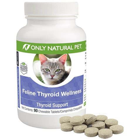 cat thyroid medication picture 5
