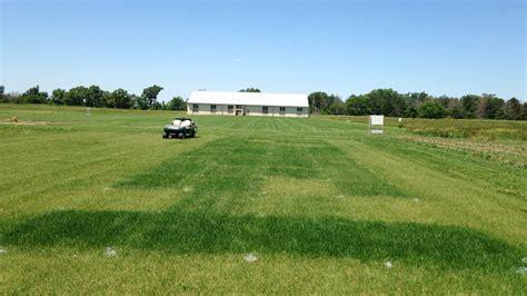 alfalfa fertilizer picture 11