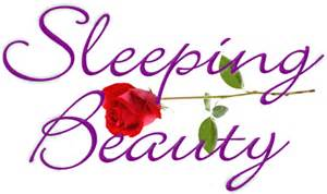free sleeping beauty clip art picture 1