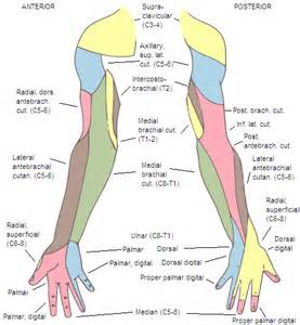 numbness of hands during sleep picture 6