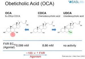 ursodeoxycholic acid picture 7