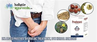 for free indian herbs to treat enlarged prostrate picture 7