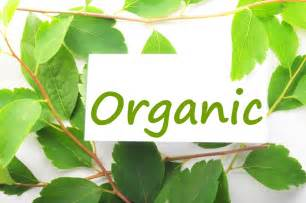 organic skin care products picture 3