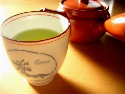 green tea for bronchitis picture 19