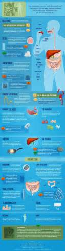 hydro colon probiotics picture 10