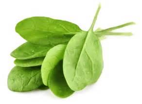 anung prutas mayaman sa vitamin e picture 1