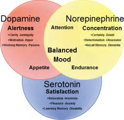 natural dopamine releasers picture 1