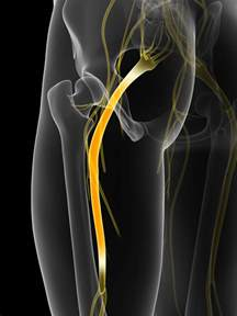 surgery bladder control picture 9