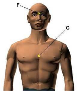 pressure points for anti aging picture 11