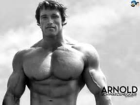 arnolds muscle pictures picture 6
