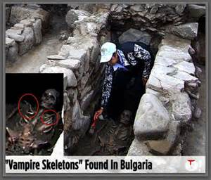 what is the vampire fungus found in human picture 2