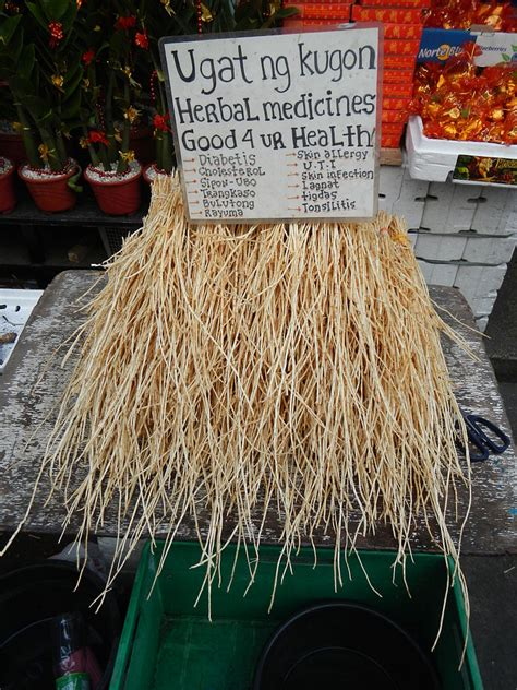 natural herbal medicine in binondo manila picture 3