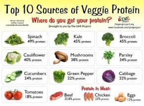 soy protein weight loss diet picture 17