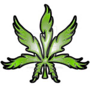 marijuana plant and how to smoke picture 9