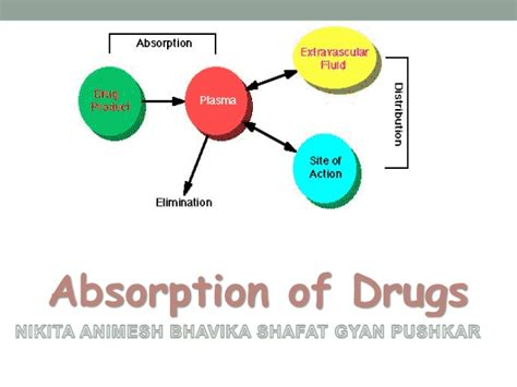 drug absorption animation picture 1