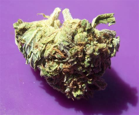 what strain of weed is good for skin picture 8