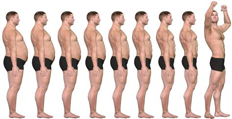 order hgh levels picture 5