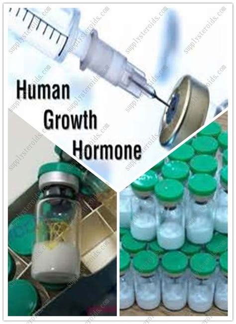human growth hormone price online delhi picture 8