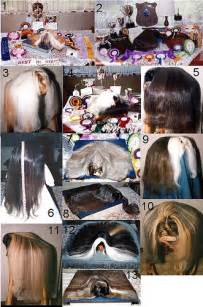 american collage of hair picture 17