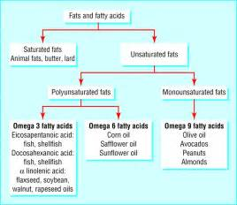 acne fatty acids picture 1