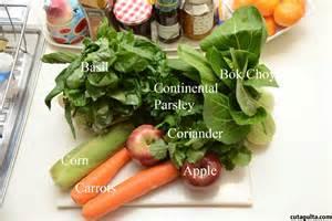 cavy diet picture 2