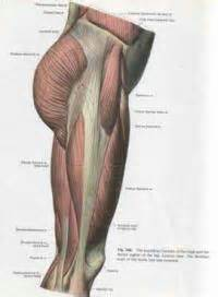 muscle tightness picture 2