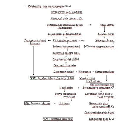 askep leukemia akut picture 14