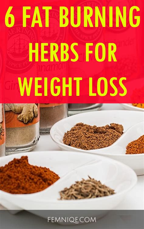 weight loss herbs picture 13
