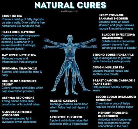 natural cures for herpes picture 6