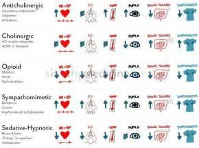adrenergic drugs quiz nclez picture 2